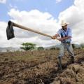 Lucrarile solului